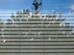 rolety na oknach